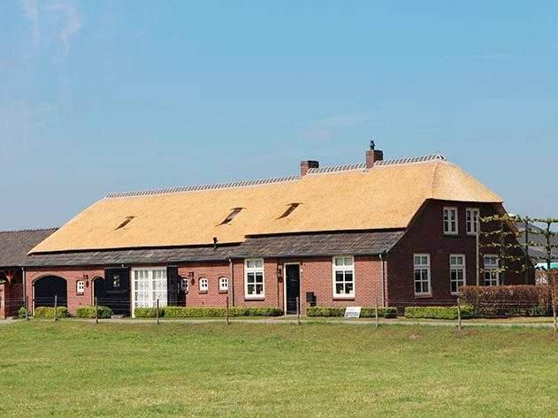 Referentie Rietdekkersbedrijf Molenaar: rieten dak woonboerderij Oss