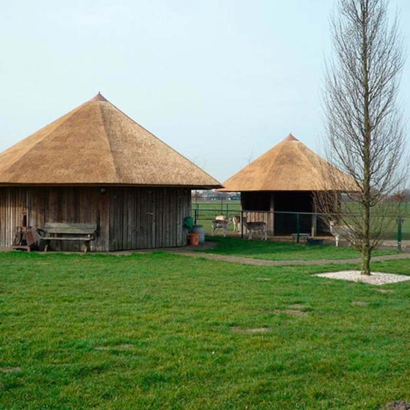 Referentie Rietdekkersbedrijf Molenaar: rieten dak dierenverblijf Berghem