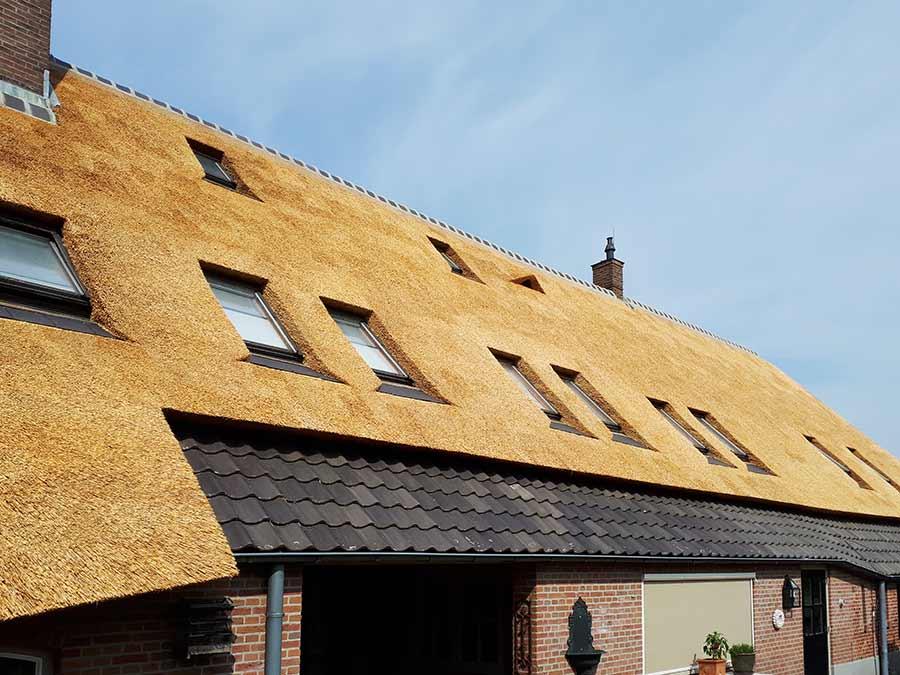 Referentie Rietdekkersbedrijf Molenaar: rieten dak woonboerderij Ravenstein