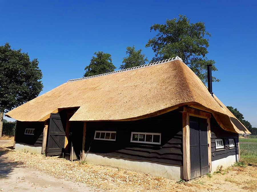 Referentie Rietdekkersbedrijf Molenaar: rieten dak bijgebouw Volkel