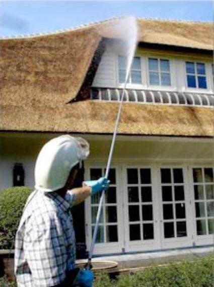 Mos- en algenbestrijding rieten dak, door Rietdekkersbedrijf Molenaar te Geffen